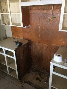 Demolition of Cabinets/Kitchen