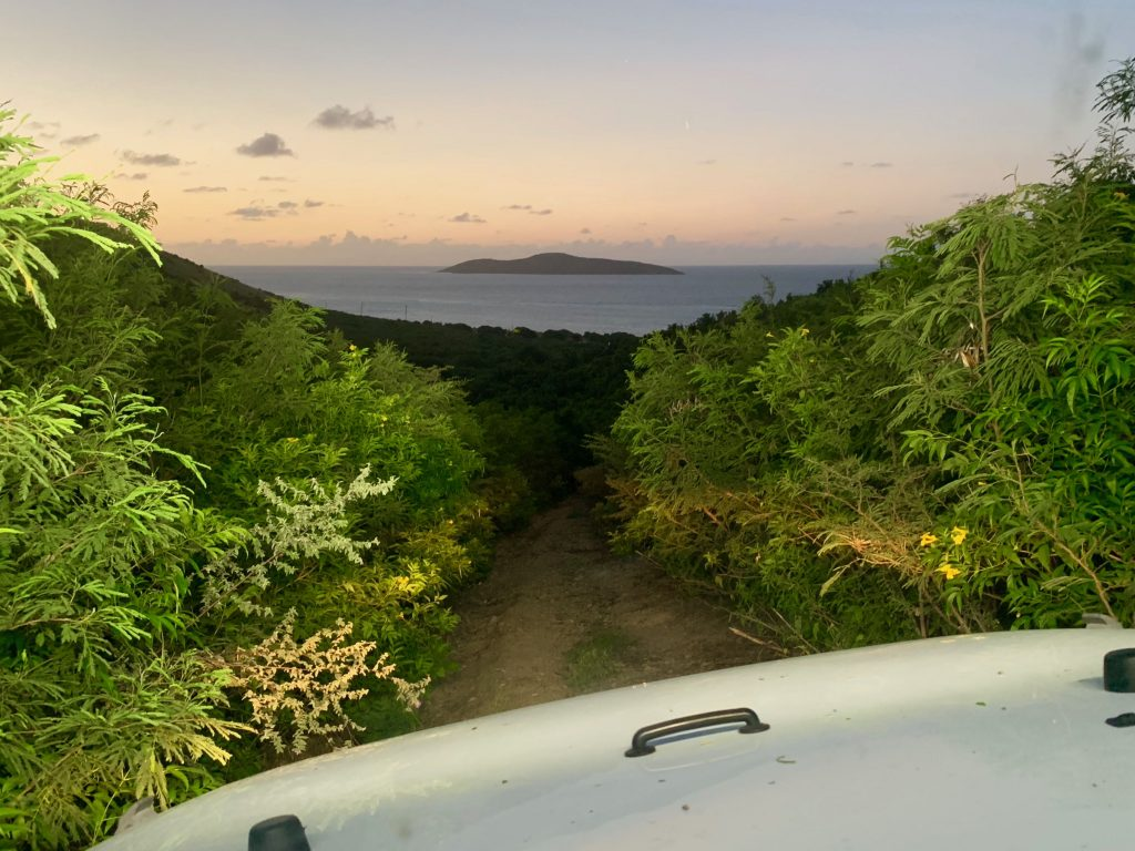 Jeep Trail with View of Buck Island